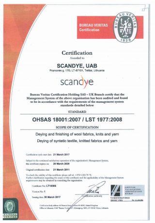 OHSAS 18001 2007 (1)-1